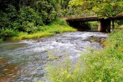 ορμητικά σημεία ποταμού γ&epsil Στοκ φωτογραφίες με δικαίωμα ελεύθερης χρήσης