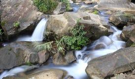 Ορμητικά σημεία ποταμού και καταρράκτες του yuanyang & x28  πάπια & x29 μανταρινιών  κολπίσκος στοκ φωτογραφία