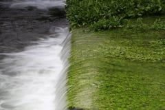 Ορμητικά σημεία ποταμού και πράσινη χλόη Στοκ Φωτογραφία
