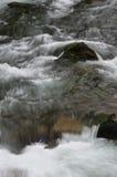 Ορμητικά σημεία ποταμού κολπίσκου Στοκ φωτογραφία με δικαίωμα ελεύθερης χρήσης
