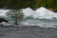 Ορμητικά σημεία ποταμού πτώσεων Niagra Στοκ Φωτογραφία