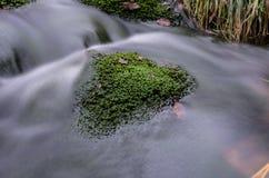 Ορμητικά σημεία ποταμού σε Jizera Στοκ φωτογραφίες με δικαίωμα ελεύθερης χρήσης