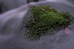 Ορμητικά σημεία ποταμού σε Jizera Στοκ εικόνες με δικαίωμα ελεύθερης χρήσης