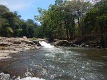 Ορμητικά σημεία ποταμού στη Κόστα Ρίκα Στοκ Εικόνες