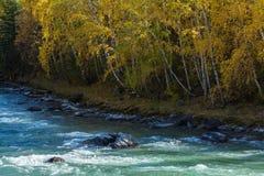 Ορμητικά σημεία ποταμού του ποταμού Katun στα βουνά Altai, Ρωσία Φύση Στοκ φωτογραφία με δικαίωμα ελεύθερης χρήσης