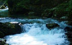 Ορμητικά σημεία ποταμού φαραγγιών Vintgar του ποταμού Radovna που αιμορραγούνται πλησίον Στοκ εικόνα με δικαίωμα ελεύθερης χρήσης