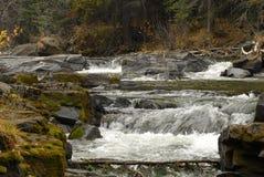ορμητικά σημεία ποταμού Στοκ εικόνα με δικαίωμα ελεύθερης χρήσης