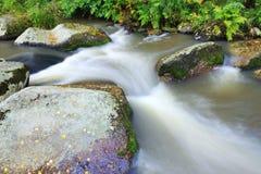 ορμητικά σημεία ποταμού Στοκ Εικόνες