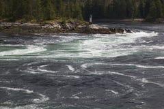 ορμητικά σημεία ποταμού skookumchuk Στοκ εικόνες με δικαίωμα ελεύθερης χρήσης