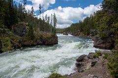 Ορμητικά σημεία ποταμού Yellowstone στοκ εικόνες