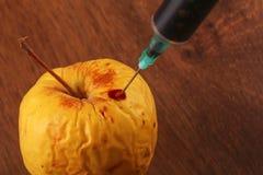 Ορμόνη Apple στο ξύλο Στοκ Φωτογραφίες