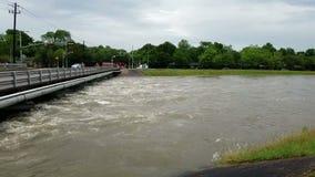Ορμώντας νερά πλημμύρας απόθεμα βίντεο