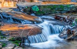 Ορμώντας νερό πέρα από τα φύλλα πτώσης Στοκ Εικόνες