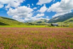 Οροπέδιο βουνών Grande πιάνων, Ουμβρία, Ιταλία Στοκ φωτογραφία με δικαίωμα ελεύθερης χρήσης