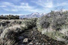 Οροσειρά άποψη κολπίσκου στοκ φωτογραφία