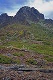 οροσειρά λόφων Στοκ Εικόνες