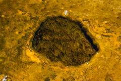 Ορυκτοί σχηματισμοί στο yellowstone Στοκ φωτογραφίες με δικαίωμα ελεύθερης χρήσης