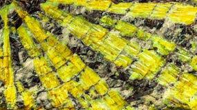 Ορυχεία κρυστάλλου μέσα να εσωκλείσει το βράχο στοκ εικόνες