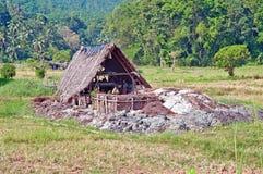 Ορυχείο πολύτιμων λίθων σε Ratnapura, Σρι Λάνκα Στοκ Εικόνα