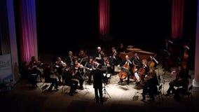 Ορχήστρα αιθουσών τεσσάρων εποχών απόθεμα βίντεο
