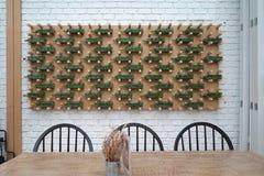 Ορχιδέες δενδρυλλίων στη σαφή διακόσμηση φιαλών στην εκμετάλλευση ξυλείας στοκ εικόνες