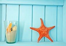 οστρακόδερμα θάλασσας διακοσμήσεων Στοκ εικόνα με δικαίωμα ελεύθερης χρήσης