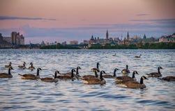 Οττάβα, Καναδάς στο ηλιοβασίλεμα στοκ φωτογραφίες με δικαίωμα ελεύθερης χρήσης