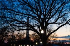 Ουάσιγκτον, ΣΥΝΕΧΕΣ μνημείο τη νύχτα Στοκ φωτογραφία με δικαίωμα ελεύθερης χρήσης