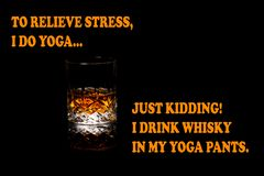 Ουίσκυ αστείο Meme, πίνω το ουίσκυ στα εσώρουχα γιόγκας στοκ φωτογραφία