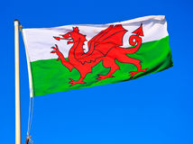 Ουαλλέζικη σημαία στοκ εικόνα με δικαίωμα ελεύθερης χρήσης