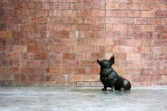 Ουαλλέζικο μνημείο σκυλιών corgi από το γλύπτη Ilya Stawski, στο κέντρο του Ιρκούτσκ Τέταρτο Sloboda, Ρωσία Στοκ Εικόνες