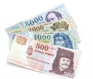 Ουγγρικά Forint τραπεζογραμμάτια Στοκ εικόνα με δικαίωμα ελεύθερης χρήσης