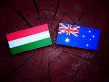 Ουγγρική σημαία με την αυστραλιανή σημαία σε ένα κολόβωμα δέντρων που απομονώνεται Στοκ Εικόνα