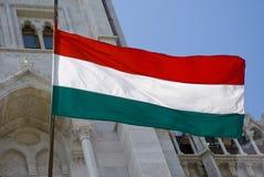 Ουγγρική σημαία, Ουγγαρία Στοκ Εικόνες