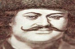 Ουγγρική forint μακροεντολή Στοκ Εικόνα