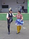 Ουγγρικός εθνικός χορός στοκ εικόνες με δικαίωμα ελεύθερης χρήσης