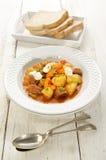 Ουγγρικό goulash με το βόειο κρέας και την ξινή κρέμα Στοκ Εικόνες