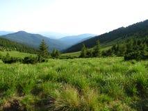 Ουκρανικά Carpathians Στοκ Φωτογραφία