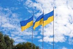 Ουκρανικές σημαίες Στοκ φωτογραφίες με δικαίωμα ελεύθερης χρήσης