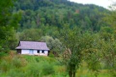 Ουκρανικό ξύλινο σπίτι μεταξύ των δέντρων Στοκ Εικόνες