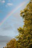 Ουράνιο τόξο και δρύινο δέντρο Στοκ φωτογραφία με δικαίωμα ελεύθερης χρήσης