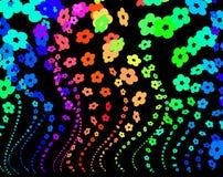 ουράνιο τόξο λουλουδιώ Στοκ Εικόνες