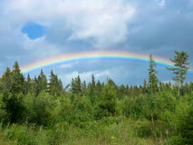 Ουράνιο τόξο πέρα από τα δέντρα στο pleso Strbske στα βουνά Tatras Στοκ φωτογραφία με δικαίωμα ελεύθερης χρήσης