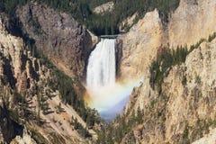 Ουράνιο τόξο στις χαμηλότερες πτώσεις του ποταμού Yellowstone στοκ εικόνες