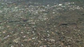 Ουράνιο τόξο στον ποταμό βουνών φιλμ μικρού μήκους