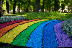 Ουράνιο τόξο, χρώμα, φύση Στοκ Φωτογραφία