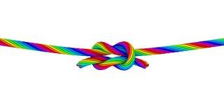 Ουράνιο τόξο Knot_C Στοκ Φωτογραφίες