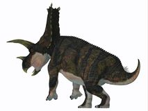 Ουρά δεινοσαύρων Bravoceratops Στοκ Φωτογραφίες