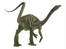 Ουρά δεινοσαύρων Anchisaurus ελεύθερη απεικόνιση δικαιώματος