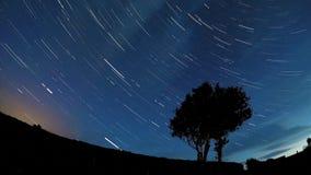 Ουρές αστεριών κατά τη διάρκεια της περιόδου 8 ωρών απόθεμα βίντεο